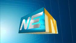 NETV 2011