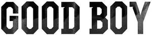 Good Boy GD X Taeyang logo