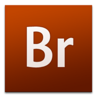 Adobe Bridge (2007-2008)