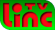 LINC TV 2001