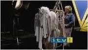 ITV1FernButton22002