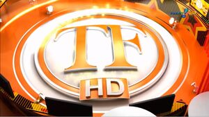 TV Fama 2010