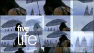 Five Life umbrella (2) 2006