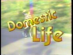 Domestic Lifelogo