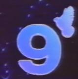 Logo-Canal-9-Libertad-Nordeste-1994