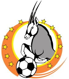 File:Namibia Premier League.png