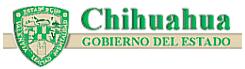 GobChihuahua2000