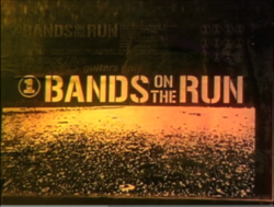 Bands of the Run
