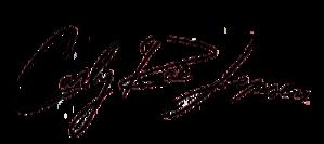 Carly Rae Jepsen logo