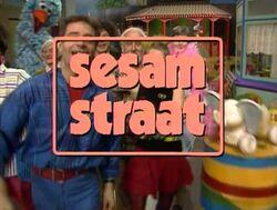 Sesamstraat80stitle