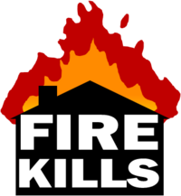FIRE KILLS LOGO