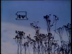 YLE-TV1-IDENT-25.3.1984-I