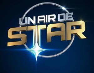 Un air de star logo 2013