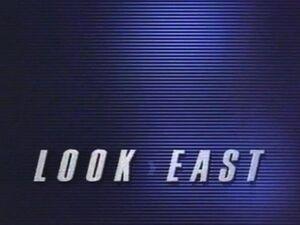 Lookeast 1993