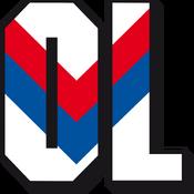 Olympique Lyonnais logo (1989-1996)