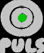 TVPuls2001