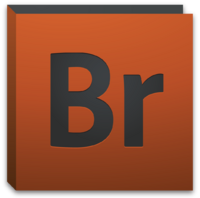 Adobe Bridge (2010-2012)