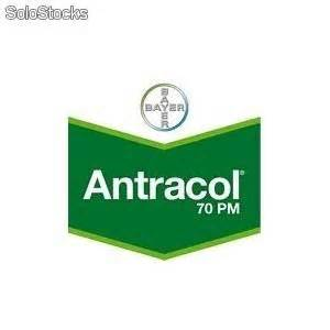 Antracol logo