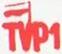 TVP1 Special 2013
