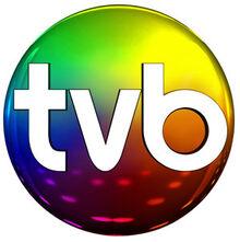Tvb logo1