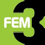 FEM3 logo