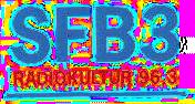SFB3 logo 1996