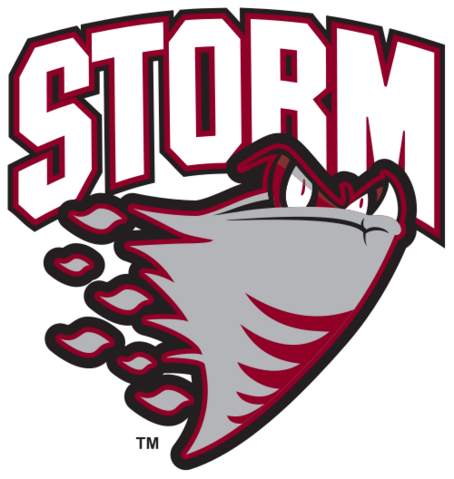 File:Guelph Storm.png