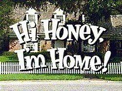 250px-Hi Honey I'm Home (logo)