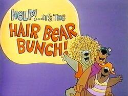 The Hair Bear Bunch