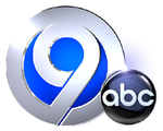 File:WSYR 2011.png