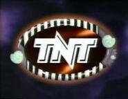 TNTID199503