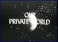Our Private World