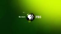 PBS 2009's 2