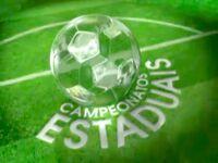 Campeonatos Estaduais (2009)