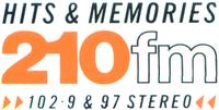 210 1989a