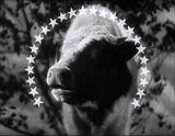 Paramount1936-themilkyway1