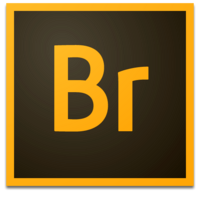 Adobe Bridge (2013-presente)