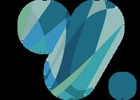 Logo VTR 2011