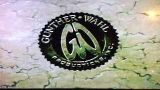 Guntherwahl1990