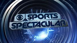 Cbssportsspectacular2014