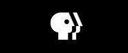 PBS-BeMore-logo