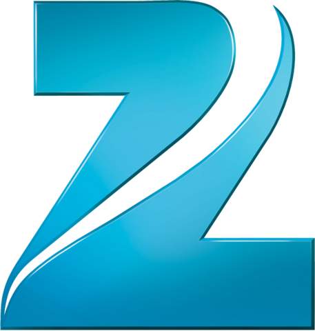 File:Zee Network 2011.png