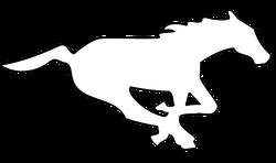 Calgary Stampeders