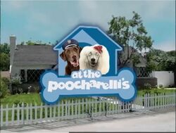 At the Poocharelli's