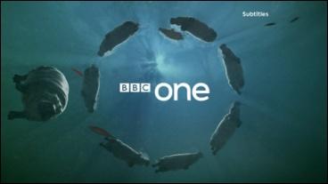 File:BBC1-2007-ID-HIPPOS-4.jpg