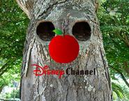 Disney Channel ID - Woodland (2000)