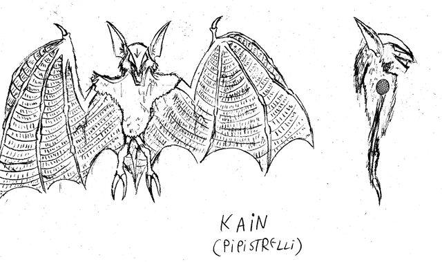 File:KAIN PIPISTRELLI.jpg