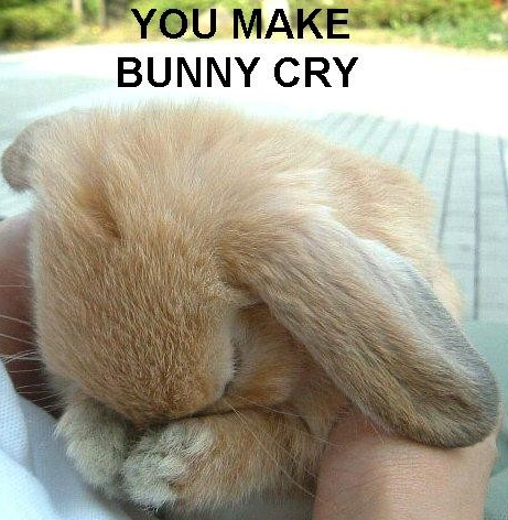 File:Youmakebunnycry2.PNG