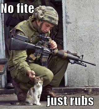 File:Soldiercat.jpg