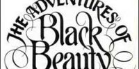 The Adventures Of Black Beauty